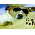 Goggle safety